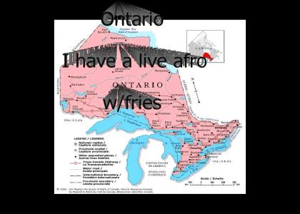 Ontario Hosts Live Afro