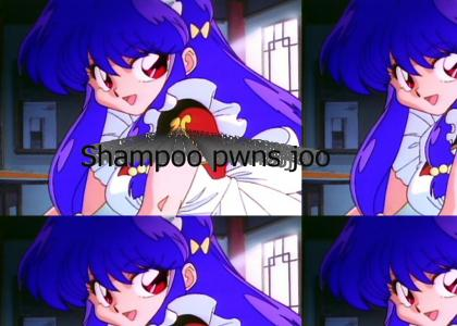 Shampoo is better