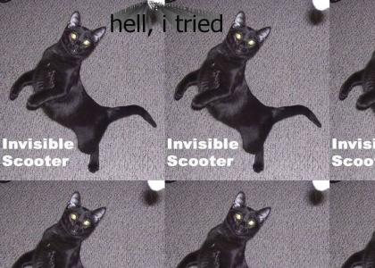 Invisible Scooter Cat (2nd attempt)