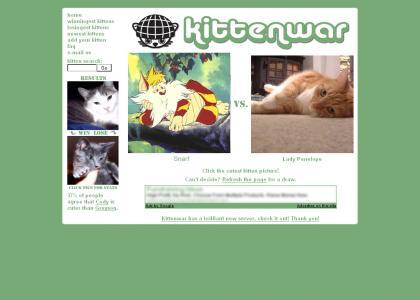 Snarf > Kitten War