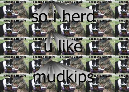 MUDKIPS ARE SOOOO RARE