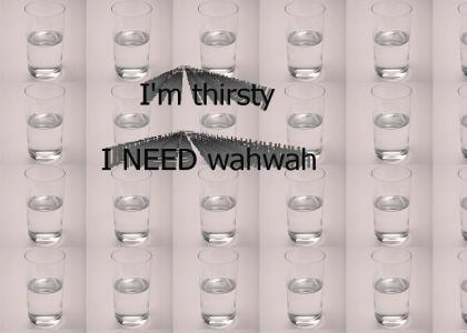 I Need Wahwah