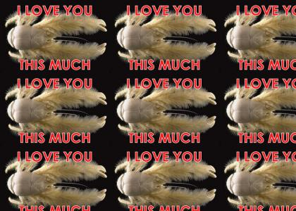 Fluffy Crab Loves You