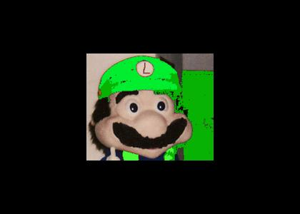 Remember Luigi