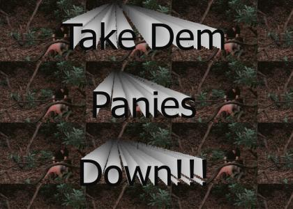 Take Dem Panies Down(Refresh)