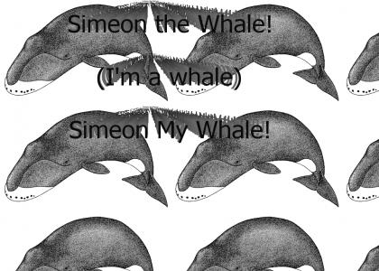 Simeon the Whale