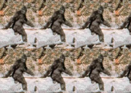Bigfoots just blurry