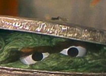 Oscar The Grouch Stares Into Your Soul!
