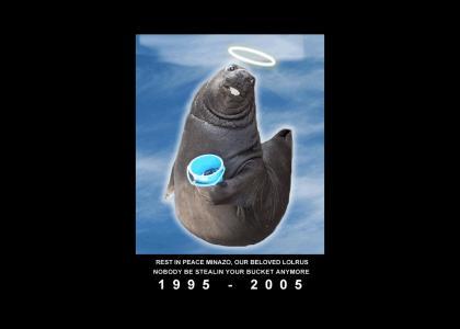 In Loving Memory...
