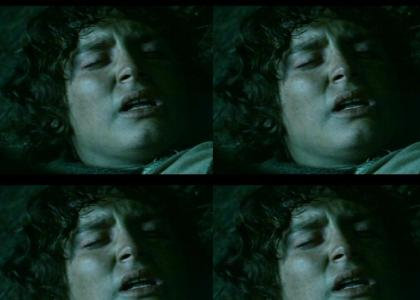 Frodo got some