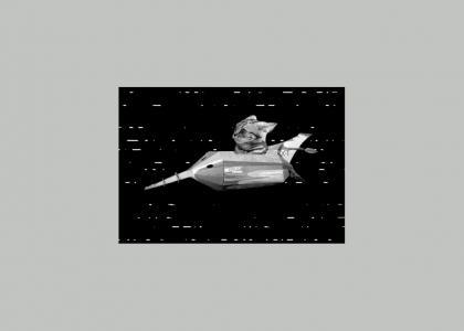 Space Cat 1958