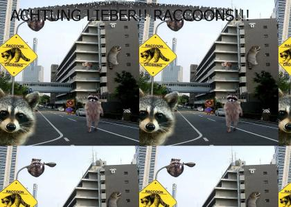 The REAL Raccoon City