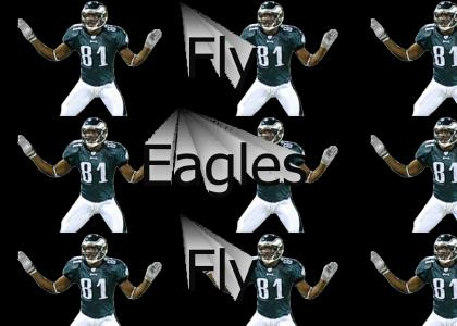 Fly Eagles Fly, on the road to victory