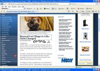 OMG MOAR BURNED CATS!!!
