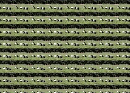 Goats Work It