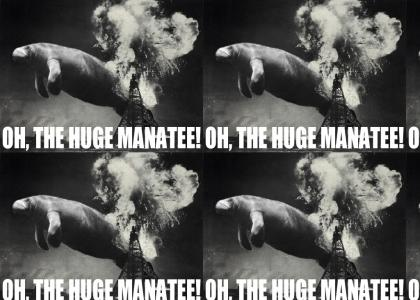 Oh, the huge manate