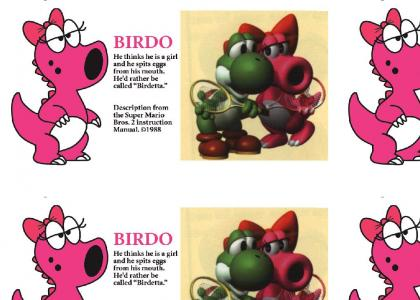 Yoshi and Birdo... gay lovers? (read the text, it's implying Birdo's male, idiots)