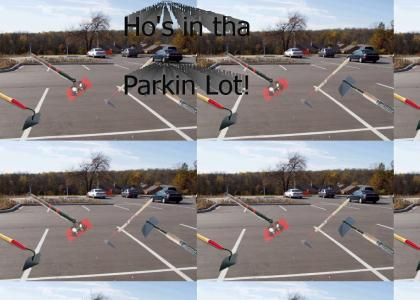 There's What In The Parkin Lot?