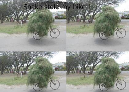 Snake stole my bike