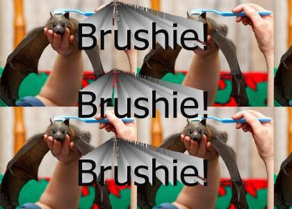 Brushie! Brushie! Brushie!