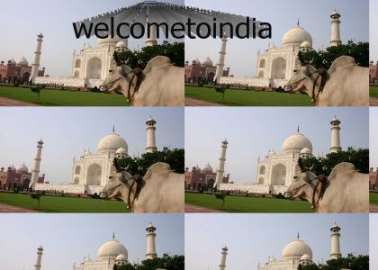 welcometoindia