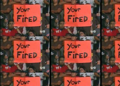 WWE Fans Fail At Grammar
