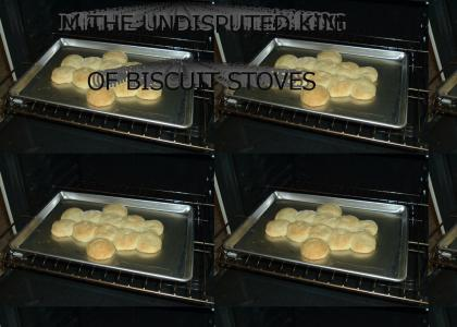 King of Biscuit Stoves!