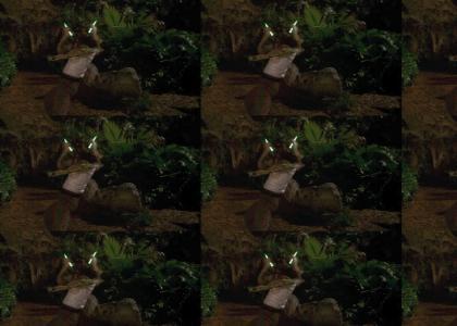 Ownij Real Ace Ventura Jungle Rave