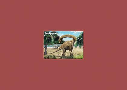 brachiosaurus RAWR! rawr.