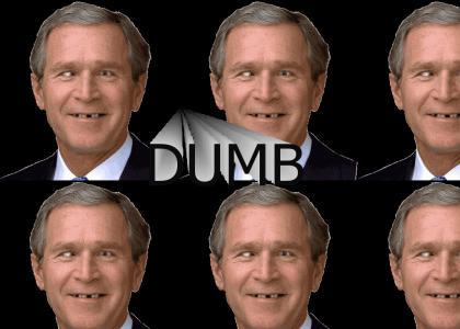 Bush is..