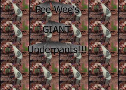 Pee Wee's Giant Underpants Swing!