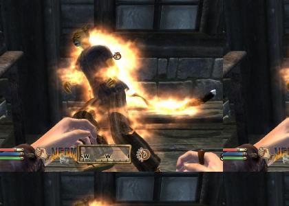 Elder Scrolls V: NEDM