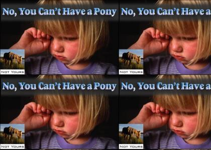 No Ponies