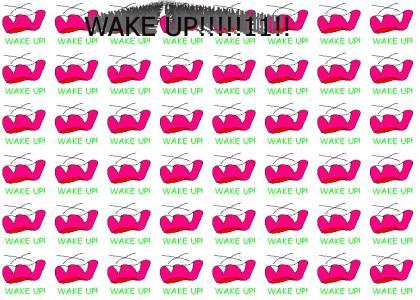 WAKE UP!!!!!