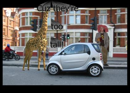 Giraffes can't go in Smart cars