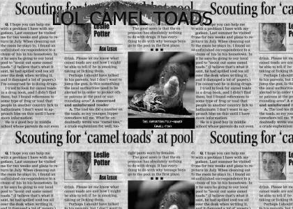 cameltoadscouting