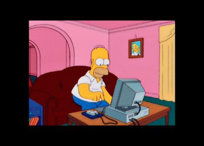 homer uses the internet