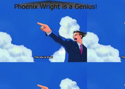 Phoenix Wright: Phoenix is a genius!
