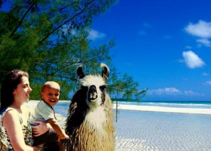 Obama on a Llama with his Mama in the Bahamas