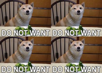 Broccoli Dog Not Amused