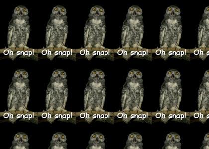 O Snap!