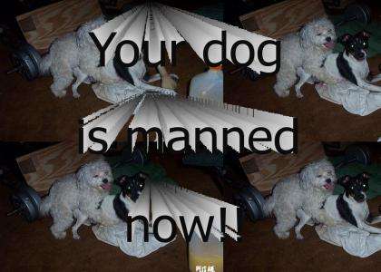 Your dog is manned now!