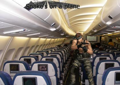 Snake's on a plane!