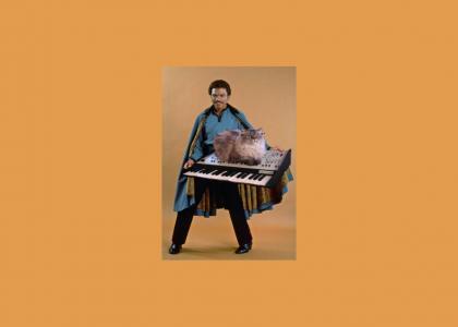 Lando's Musical Pet