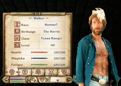Walker, Cyrodiil Ranger