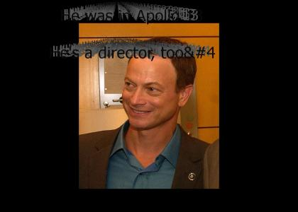 Gary Sinise is an Actor