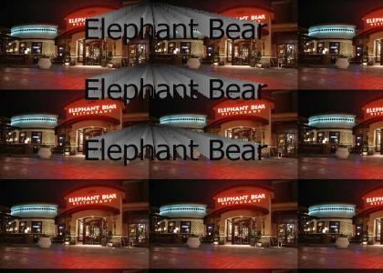Elephant Bear
