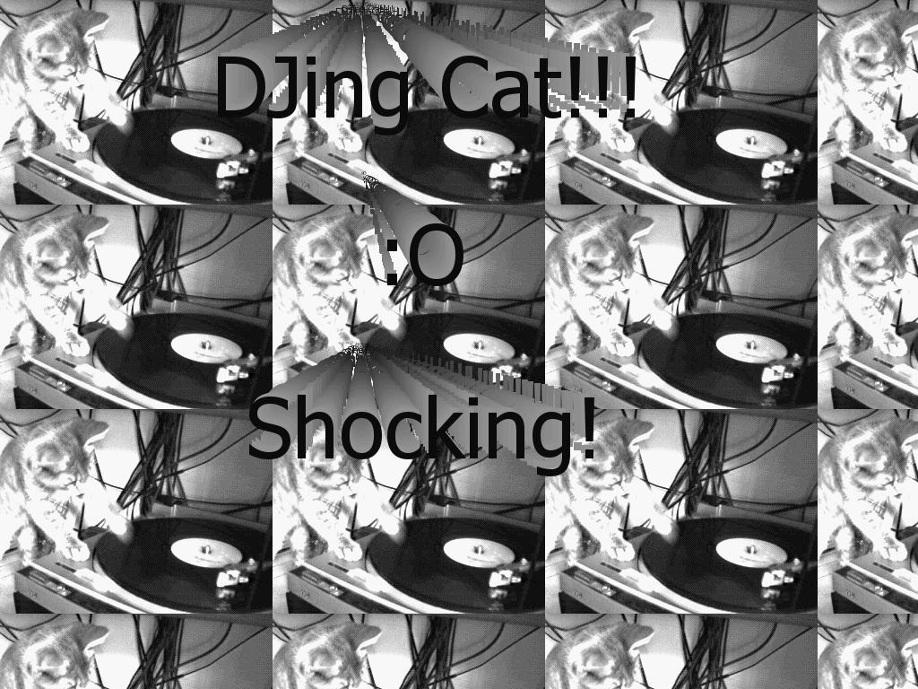 djkittycatmusic