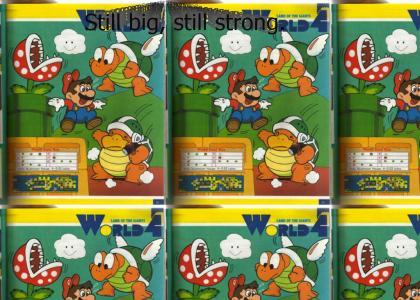 Super Mario All Stars: Giant Land Tribute
