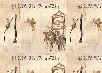 Medieval Super Cat saves Medieval WTFOMG Cat!!
